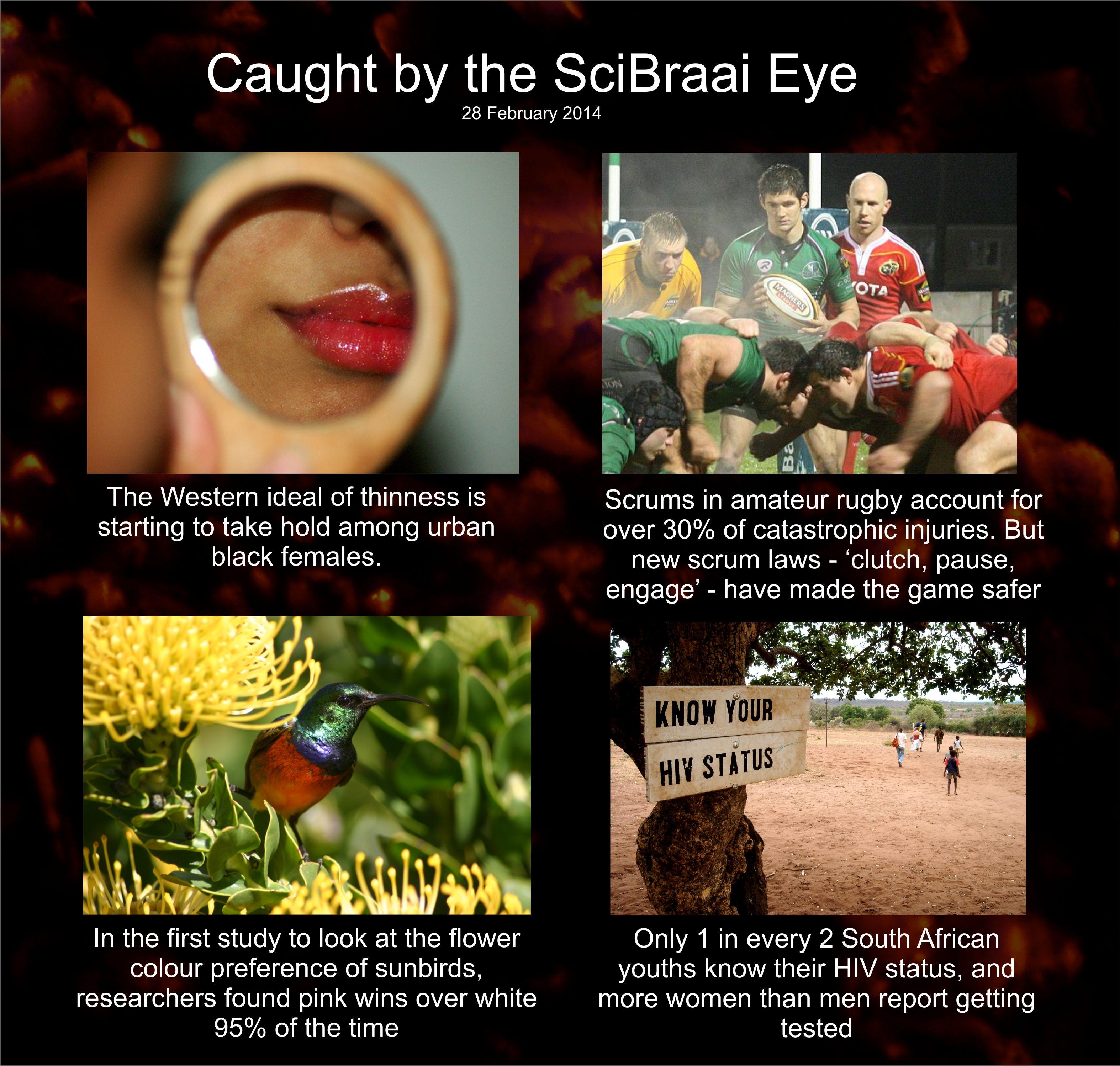 Caught by the SciBraai Eye » SciBraai
