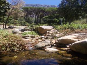Die Platteklip-stroom aan die voet van Tafelberg waar die pokke in 1713 versprei het toe besmette lankens daar gewas is. Foto met vergunning van Howard Phillips.