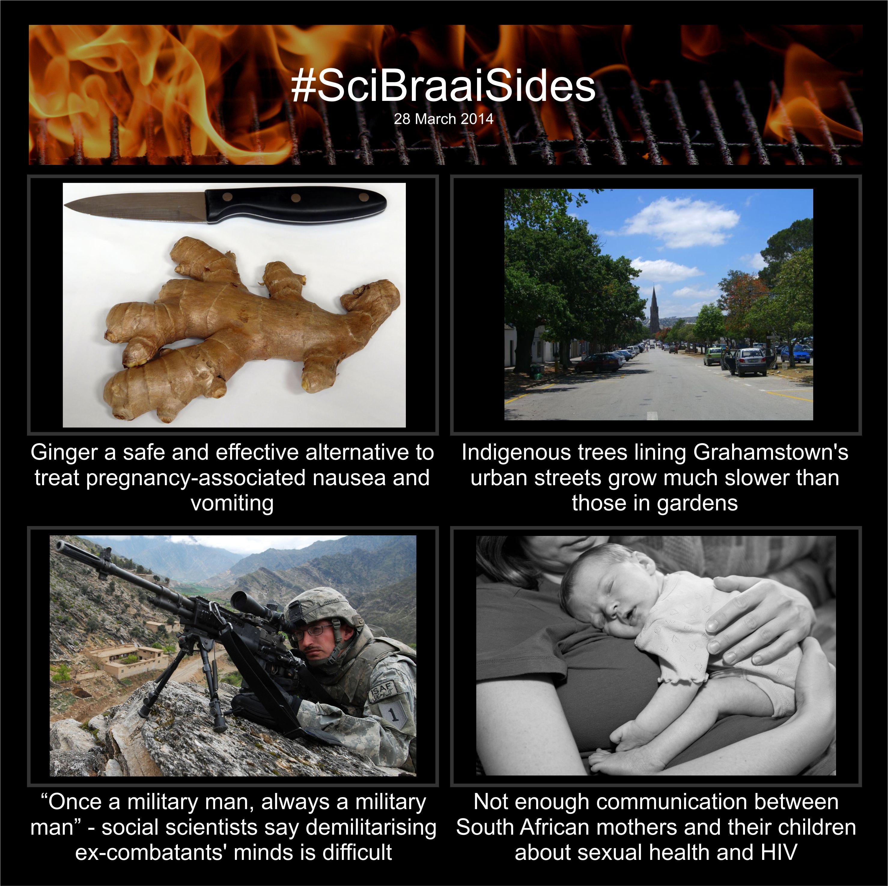 SciBraaiSides 28 March 2014 » SciBraai