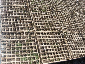 Close-up of mats weaved from palm leaves - to help curb soil erosion. Photo: Garry Paterson