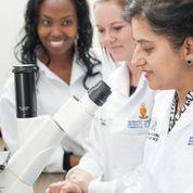 Prof Namrita Lall working with Tukkies MSc students Mabatho Nqephe and Anna-Mari Kok.