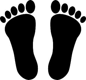 feet-155585_640