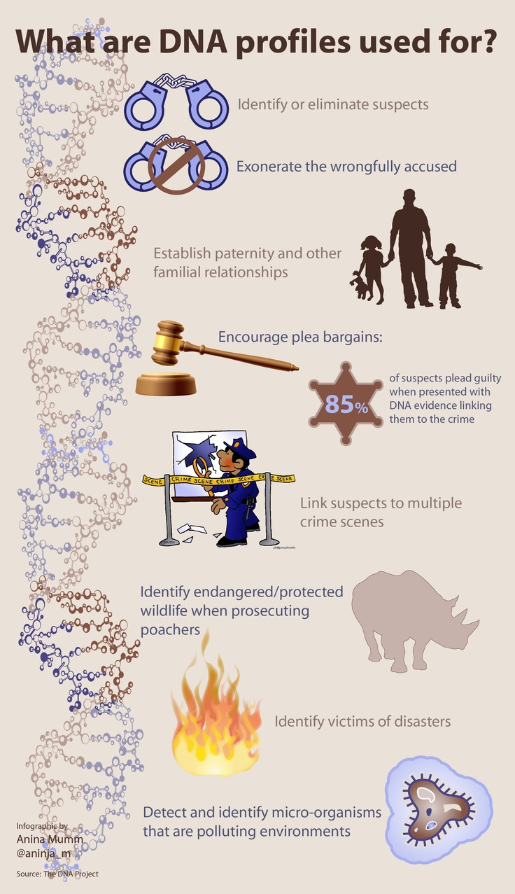What Are DNA Profiles Used For Infographic