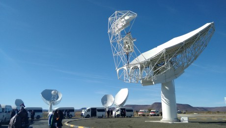 """The """"Offset Gregorian"""" type antenna stands among 15 others that form part of the current configuration of the MeerKAT telescope. Photo: Sibusiso Biyela."""