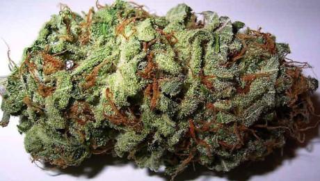 Weed_640